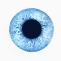 Глаукомата – същност и рискови фактори за развитието й