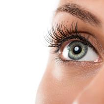 Какво знаем за ретината?